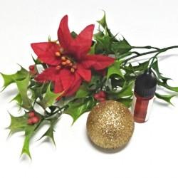 Aroma vánoční fantazie 10ml