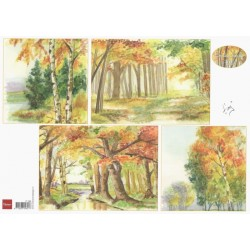 Papír A4 Stromy na podzim (MD)