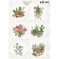 Papír A4 Herbs & Leaves 2 (MD)