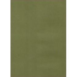 Transparentní papír 150g A4 - rákosově zelená