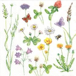 Luční květy 33x33