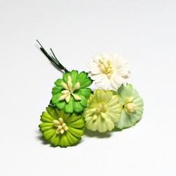 Papírový květ sedmikrásky 2,5cm, 5ks, zelený mix