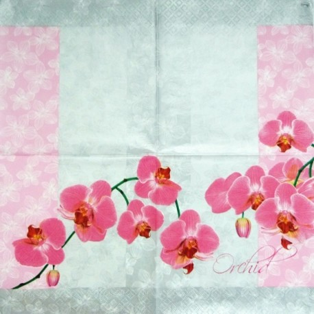 Orchid 33x33