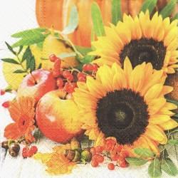 Slunečnice, ovoce 33x33
