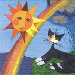 Kočka a duha 33x33