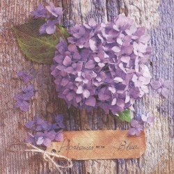 Hortenzie na dřevě 33x33