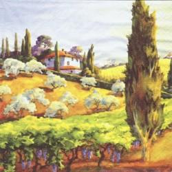 Toskánsko, dům na kopci 33x33