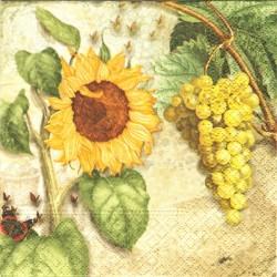 Slunečnice a hroznové víno 25x25