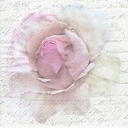 Světle růžové poupě na písmu 33x33