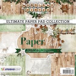 Sada papírů 15x15 Woodland Winter nr.91 (SL)