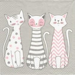Okouzlující kočky 33x33