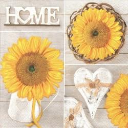 HOME, slunečnice 33x33