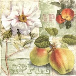 Jablečný sad 33x33