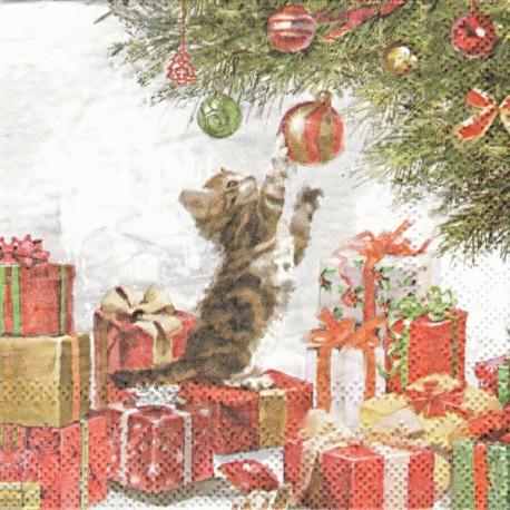 Koťátko a vánoční koule 25x25