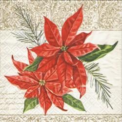 Poinsettia 25x25