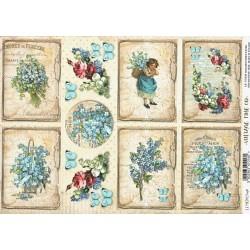 Scrap.papír A4 Vintage Time, kartičky s pomněnkami