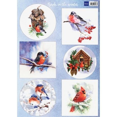 PapírA4 Birds in the snow (MD)