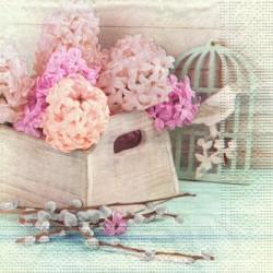 Hyacinty v truhlíku 33x33