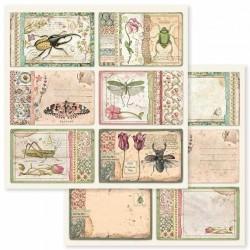 Spring Botanic, kartičky 30,5x30,5 scrapbook
