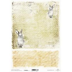 Papír pro scrapbook 200g A4 - zajíček, šikmé proužky