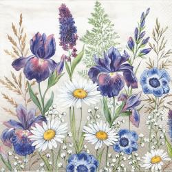 Mix lučních květů 33x33