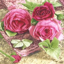 Sentimental Roses 33x33