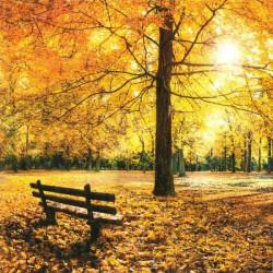 Zlatý podzim 33x33