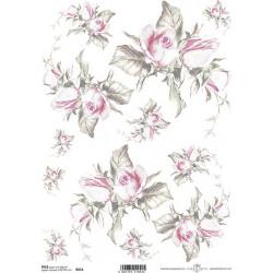 Papír rýžový A4 Růže jemně zbarvené