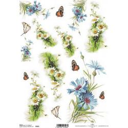 Papír rýžový A4 Kopretiny, chrpy a motýlci