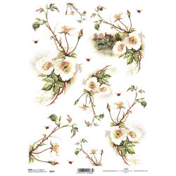 Papír rýžový A4 Šípková růže, chaloupka