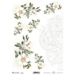 Papír rýžový A4 Šípková růže, ornament