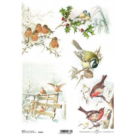 Papír rýžový A4 Zimní obrázky s ptáčky I.