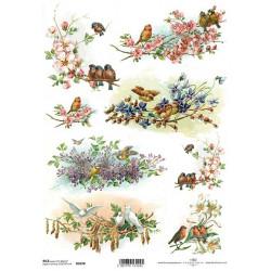Papír rýžový A4 Ptáčci na kvetoucích větvičkách