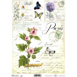 Papír soft A4 Paris, proskurník