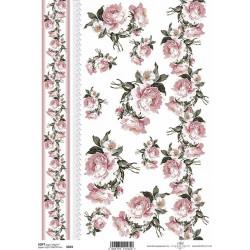 Papír soft A4 Růžové růže a bordura