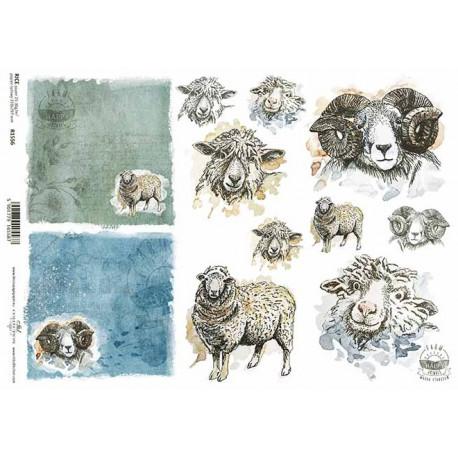 Papír rýžový A4 Šťastná farma, ovce