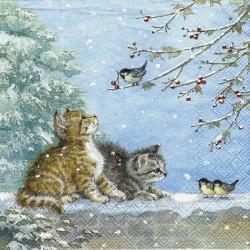Koťata a ptáčci 33x33