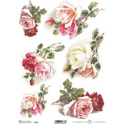 Papír rýžový A4 Větvičky s růžemi