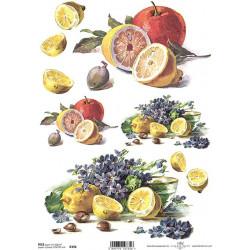 Papír rýžový A4 Citrusy a fialky