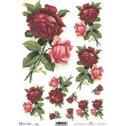 Papír rýžový A4 Rudá a růžová růže