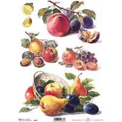 Papír rýžový A4 Malované ovoce