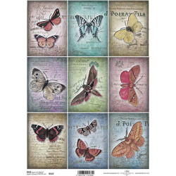 Papír rýžový A4 Kartičky motýli