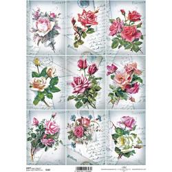 Papír soft A4 Růže na pohlednicích