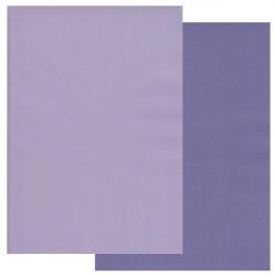 Sada 10ks pergamenových papírů DVA TÓNY, 140g, A4 - vistárie, iris
