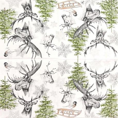 Zimní příroda 33x33