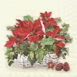 Vánoční hvězda v bílém košíku 33x33