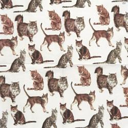 Různé kočky 33x33