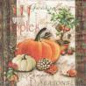 Podzimní zahradnictví 33x33