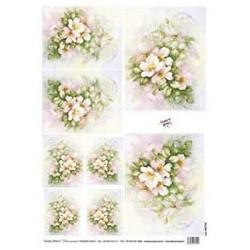 Papír rýžový 35x50 Šípková růže (7725)