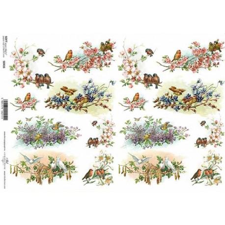 Papír soft A4 Obrázky s ptáčky na kvetoucích větvičkách